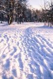 Путь в снеге Стоковые Изображения