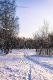 Путь в снеге Стоковые Изображения RF