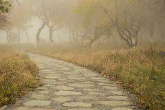 Путь в тумане Стоковое Изображение RF