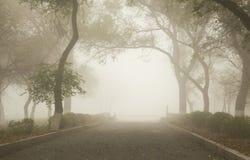 Путь в тумане Стоковое Фото