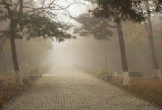 Путь в тумане Стоковая Фотография