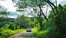 Путь гористый Стоковые Фотографии RF