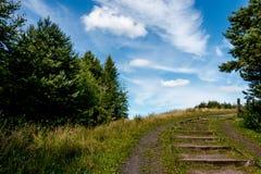 Путь горного склона Стоковая Фотография