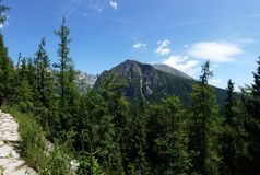 Путь горы в высоком Tatras стоковое изображение rf