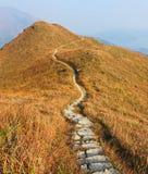 путь горы стоковые изображения