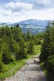Путь гор Стоковые Изображения RF