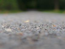 Путь гравия с расплывчатой предпосылкой Стоковые Изображения RF