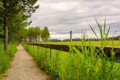 Путь грязи на сельской местности Стоковые Фотографии RF