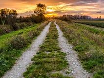 Путь грязной улицы водя к заходу солнца Стоковое фото RF
