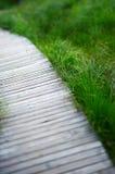 путь деревянный Стоковая Фотография RF