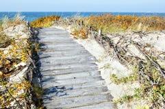 путь деревянный Стоковая Фотография
