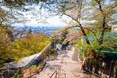 Путь до места захоронения Byakkutai на Mt Iimori Стоковое Изображение RF