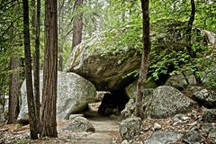 Путь до национальный парк Калифорния Yosemite стоковые изображения