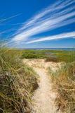 путь дюн песочный стоковые изображения