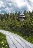 Путь деревянной доски и дистантная башня Стоковое Изображение RF