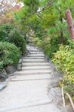 Путь лестницы Стоковые Фотографии RF