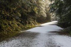 Путь заводи Стоковая Фотография RF