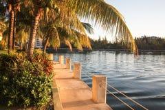 Путь захода солнца Багамских островов водой и пальмами Стоковое фото RF