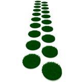 путь зеленого цвета травы Стоковые Изображения