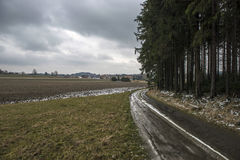 Путь зимы вокруг леса Стоковые Изображения