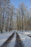 Путь зимы Стоковая Фотография RF