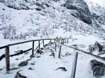 Путь зимы Стоковое Изображение RF