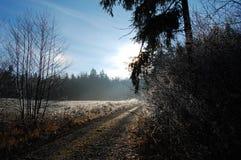 Путь зимы Стоковое Изображение