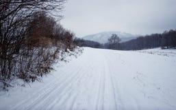 Путь зимы Стоковая Фотография