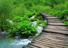 Путь и водопад в парке Plitvice Стоковая Фотография