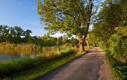 Путь и пруд Стоковое Изображение