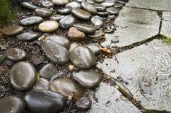 Путь камешка Стоковое Изображение RF