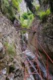 Путь каньона Стоковые Фотографии RF