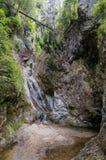 Путь каньона Стоковые Изображения