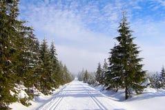 путь катания на лыжах страны перекрестный Стоковая Фотография