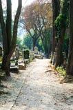 путь кладбища Стоковые Изображения