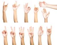 Путь клиппирования множественного женского жеста рукой изолированный на белизне Стоковое Фото