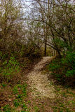 Путь к где-то стоковое фото