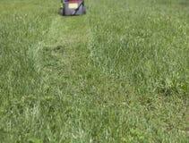 Путь клиппирований травы Стоковая Фотография RF