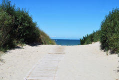Путь к морю Стоковые Фото