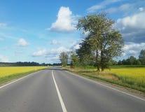 Путь к назначению Стоковые Фото