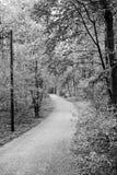 Путь к неизвестному стоковое изображение