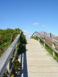 Путь к пляжу Стоковые Фото