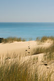 Путь к пляжу Стоковые Изображения