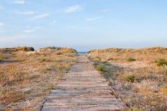 Путь к пляжу стоковые фотографии rf