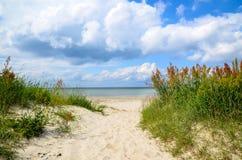 Путь к пляжу стоковое изображение