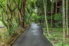 Путь к саду eden Стоковое Изображение