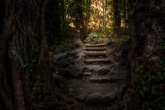 Путь к сокровищу Стоковые Фото