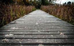 Путь к? Стоковое Фото