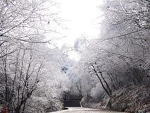 Путь к Стоковая Фотография