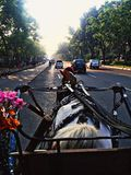 Путь к Monas Стоковая Фотография RF